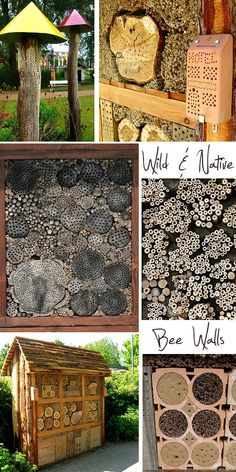 Bee walls and beneficial bug hotels. Bees need all the help they can get, and we need the bees. Just remember to clean them by replacing the fillers on an annual rotational basis to keep down mite infestations which weaken the bees.