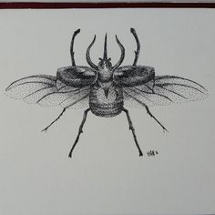 Scarab beetle #art #drawing #ink #dotwork #dot #pointillism #insect #stipple…
