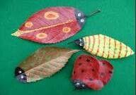 More leaf bugs