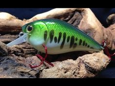 How to paint a baby bass crankbait