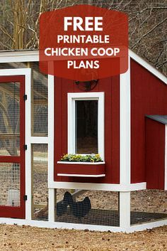 Build a Custom Chicken Coop with FREE Printable Plans from HGTV >> http://www.hgtvgardens.com/chickens/custom-chicken-coop-plans?soc=pinterest