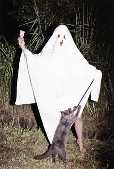 Bloody-eyed ghost with ice cream and a cat on a leash in the woods in the dark. Sheet Ghost, Bizarre, Butterfly Chair, Photo Instagram, Looks Cool, Vintage Halloween, Happy Halloween, Halloween Photos, Anton
