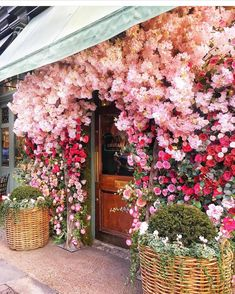 Gorgeous storefront with flowers in full bloom! Gorgeous storefront with flowers in full bloom! My Flower, Fresh Flowers, Beautiful Flowers, Pink Flowers, Flower Wall, Beauty Of Flowers, Blooming Flowers, Flowers In Bloom, Cascading Flowers
