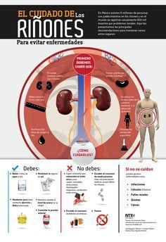 - El cuidado de los riñones para evitar enfermedades.