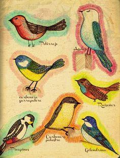 Pajaritos Rooster, Animals, Little Birds, Animales, Animaux, Animal, Animais, Chicken