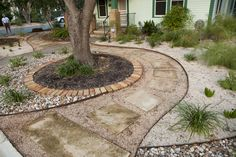 Beautiful natural stone path featuring shade loving and drought tolerant plants designed and and installed by Fertile Ground Organic Gardens in Austin, TX.