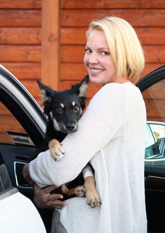 Katherine Heigl with one of two dogs adopted from the Coastal German Shepherd Rescue.