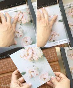 Trim the DIY vintage rose wedding invitaiton background | Download & Print