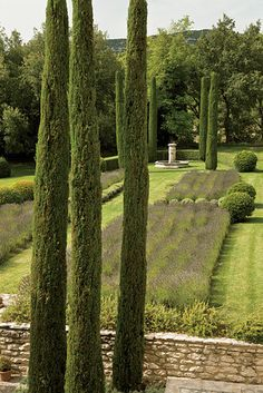 lavender beds are punctuated with cypress trees in the provence garden of decorator françois catroux Formal Gardens, Outdoor Gardens, Landscape Design, Garden Design, Provence Garden, Provence Style, Italian Garden, Cypress Trees, Garden Architecture