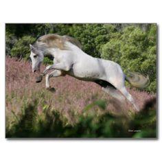 Bob Langrish Unicorn Mini Poster Picture Print 40x50cm Animal Nature Posters
