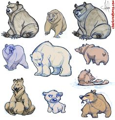 I love nearly everything about bears. Their bumbling personalities and stocky physiques, thick folds of fat and heavy matts of fur. I want to master how to draw them. Genevieve Tsai ©