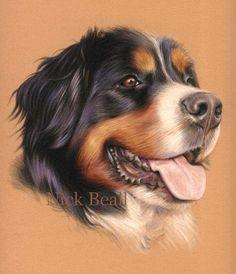 Bernese Mountain Dog artwork