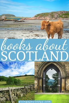 Here are the best books about Scotland! We'll cover Scottish classics, historical fiction about Scotland, mystery, travel, and Scottish history books. #booksaboutscotland #scottishbooks #scottishhistory #scottishhighlands #outlander | Books to read before visiting Scotland | Scottish authors | Books set in Scotland | Books on Scotland | Travel books on Scotland | Scottish romance novels | Scottish historical fiction | Scottish mystery series Scotland Travel Guide, Europe Travel Guide, Ireland Travel, Travel Guides, Travel Destinations, Travel Movies, Travel Books, Mystery Travel, Highland Tours