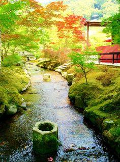 永観堂 Eikan-do. Kyoto. Japan