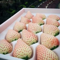 White Strawberry, Beautiful Fruits, Food Art, Sweets, Strawberries, Fish, Drink, Flowers, Pineapple