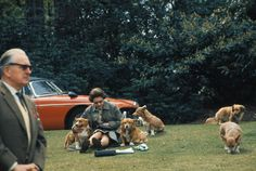 thanks Nancy Shows board for HM Queen Elizabeth II     'Sitting with Dogs'