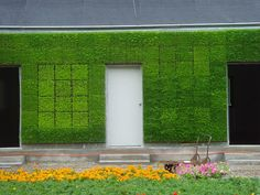 Vertical Garden by Neyer, via Flickr  Wonder if it needs mowing....