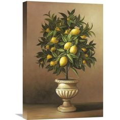 Global Gallery 'Potted Lemon Tree' by Welby Painting Print on Wrapped Canvas Size: