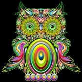 Owl Psychedelic Pop Art Design  stock photography