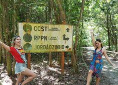 como chegar no santuario ecologico santa terezinha um dos lugares mais lindos de Alagoas France Travel, Lily Pulitzer, 1, Santa Teresa, Brazil Travel, Photography Hacks, Places To Visit, Tourism, Rice