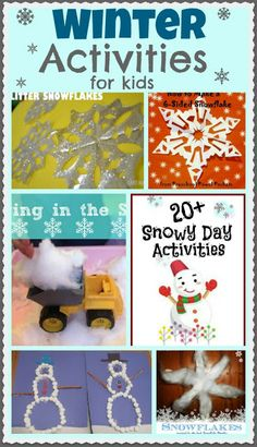 Winter Activities for Kids ~ Growing A Jeweled Rose