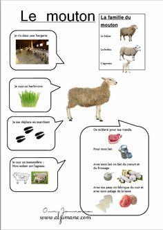 fiche identité animaux de la ferme