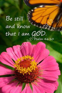 Scripture Art Photography Print Trust God Christian Home Decor 3 x 5