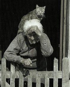 When I am old, I will still let my cat ride on my shoulders a la Gunter Gebel-Williams.