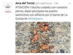 Precaución amigos de los animales #Antequera