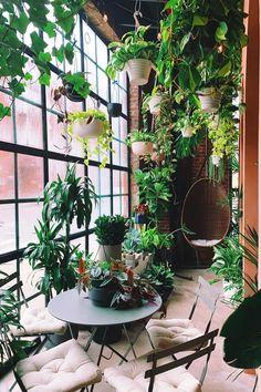 Room With Plants, House Plants Decor, Plant Decor, Big Indoor Plants, Indoor Garden, Apartamento No Brooklyn, Plantas Indoor, Jungle Decorations, Window Plants