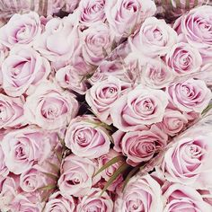 the cinderella project: because every girl deserves a happily ever after: Pastel Flowers