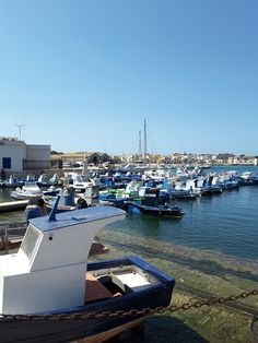 Favignana port
