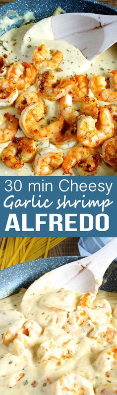 30 Minute Cheesy Garlic Shrimp Alfredo: A cheesy, garlick-y delicious pasta packed with shrimp, and an easy homemade Alfredo. 30 Minute Cheesy Garlic Shrimp Alfredo Tanja Bjorkbom tamou Food 30 Minute Cheesy Garlic Shrimp Al Fish Recipes, Seafood Recipes, Chicken Recipes, Cooking Recipes, Healthy Recipes, Recipies, Easy Shrimp Recipes, Budget Cooking, 30 Min Meals Healthy