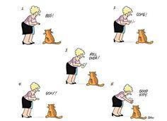 Image from http://media.rd.com/rd/images/rdc/slideshows/cat-cartoons/cat-cartoons-07-ss.jpg.