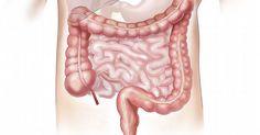¿Cuánto dura la gastritis nerviosa...? ¡Te lo contamos aquí! Ya Basta De Seguir Sufriendo, Aquí Te Digo Cómo Puedes Eliminar De Forma 100% Natural Tu Gastritis, Con Resultados En 21 Días O Menos... http://basta-de-gastritis-today.blogspot.com?prod=rB9A4Iw4