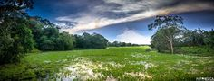Foco em Manoel Raimundo Fonseca, aluno do IF! O talentoso fotógrafo de Macapá produz paisagens espetaculares como esta.   #if #institutodefotografia #fotodoaluno #trabalhodoaluno #fotografia #cursoonline #formação  Quer saber mais sobre nosso curso? Clique no link: