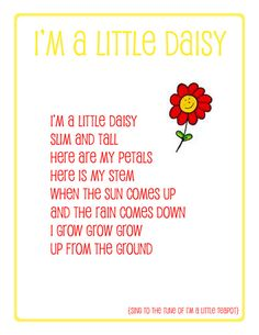 preschool song daisy - have students create melody, focusing on melodic interpretation of lyrics (grow, grow, grow... ascending)