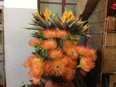 Protea en Strelitzia