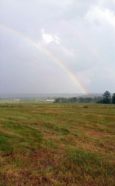 Recent day of contradictions - a double rainbow snapped during a torrential downpour! Photo by Educator Sandy Buxton.