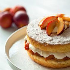 Sponge Cake with Yogurt Cream