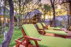 Surrounded by an ancient Tambuti Forest, the lodge is situated in the malaria- free Black Rhino Game Lodge, a concession of Pilanesberg National Park. Outdoor Chairs, Outdoor Furniture Sets, Outdoor Decor, North West Province, Game Lodge, Game Reserve, Sun Lounger, National Parks