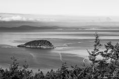 Deception Island, Goose Rock Summit, Deception Pass State Park, Washington, 2016   Click the picture above for information on purchasing a fine art photography wall print.   #blackandwhite #landscape #seascape