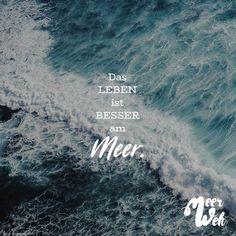 Visual Statements®️Das Leben ist besser am Meer. Sprüche / Zitate / Quotes / Meerweh / reisen / Fernweh / Wanderlust / Abenteuer / Strand / fliegen / Roadtrip