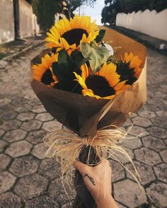 A sunflower field is like a sky with a thousand suns. A sunflower field is like a sky with a thousand suns. My Flower, Beautiful Flowers, Sunflower Flower, Sunflower Pictures, Plants Are Friends, Sunflower Wallpaper, Sunflower Fields, Flower Aesthetic, Mellow Yellow