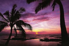 Purple Sunset - Kona, Hawaii - original