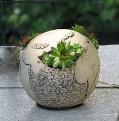 Love these ceramic succulent spheres for the garden.