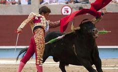 Ferrera, El Juli y Roca Rey, en el estreno de la Feria de Pontevedra