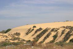 Sand dunes in Holon Dune, Israel, Vineyard, Country Roads, Outdoor, Outdoors, Vine Yard, Vineyard Vines, Outdoor Games