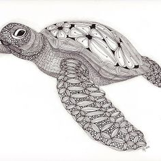 Tangled Sea Turtle