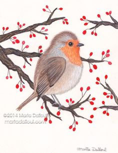 Robin Bird original watercolor art illustration di MartaDalloul